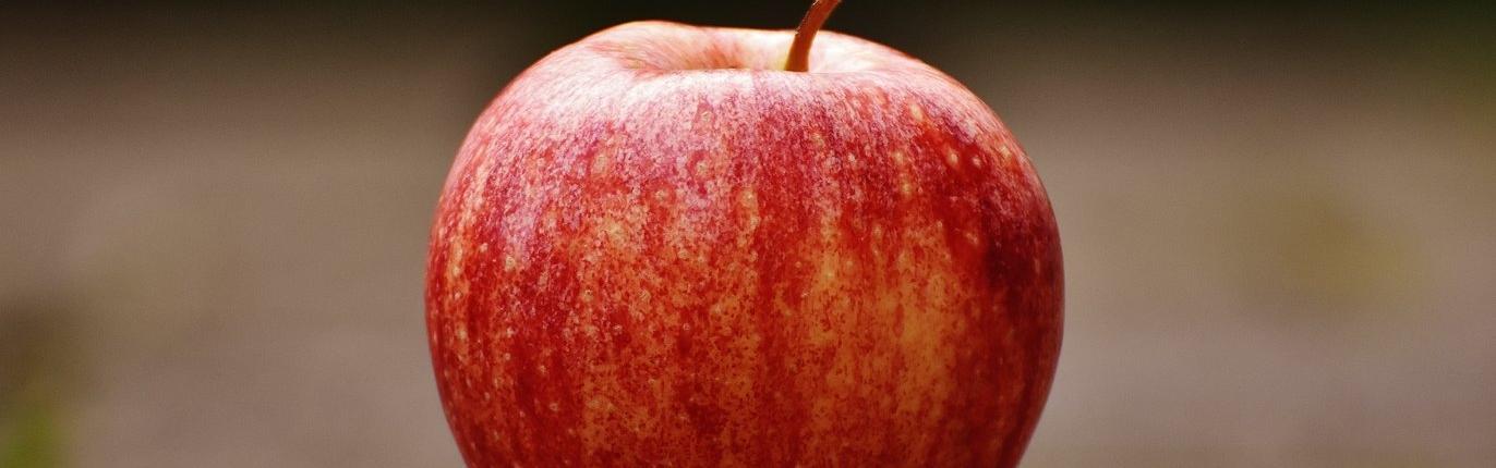 Começamos por uma maçã e depois o resto.